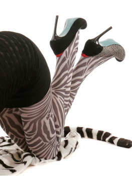 photo-collant-zebra